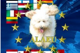 Australian Labradoodle Association of Europe (ALEAU)