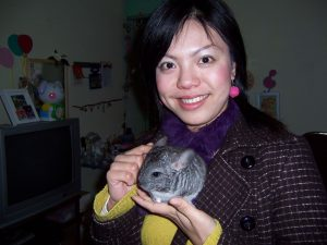 Chinchilla 1