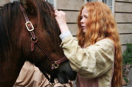 Paarden Fokken