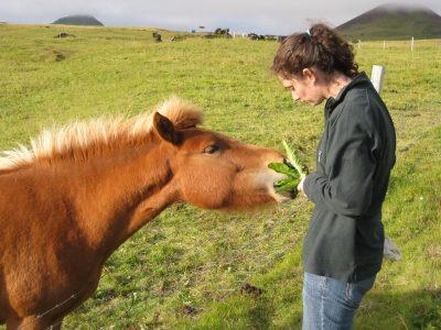 Pony software