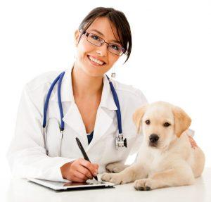 Registreer gezondheidsgegevens