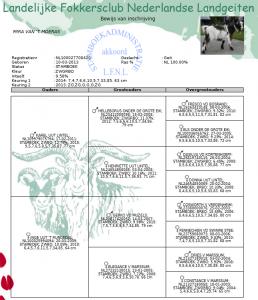Stamboekadministratie geiten