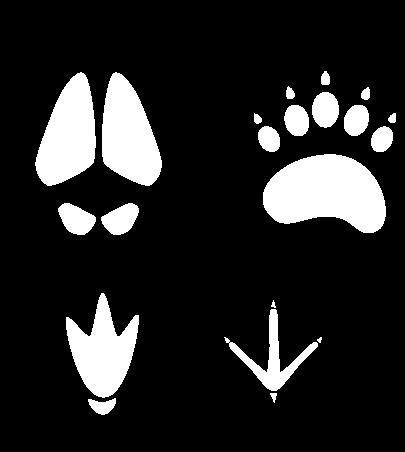 Dieren fokken